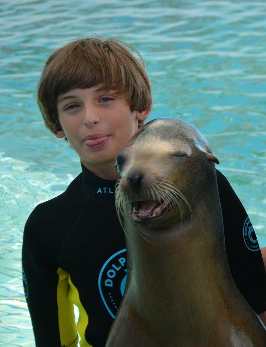 Sunshine the sea lion#VacationLife via @Vistana