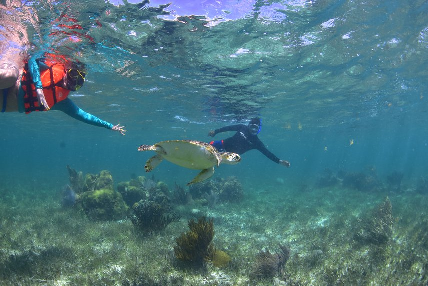 snorkeling #VacationLife via @Vistana