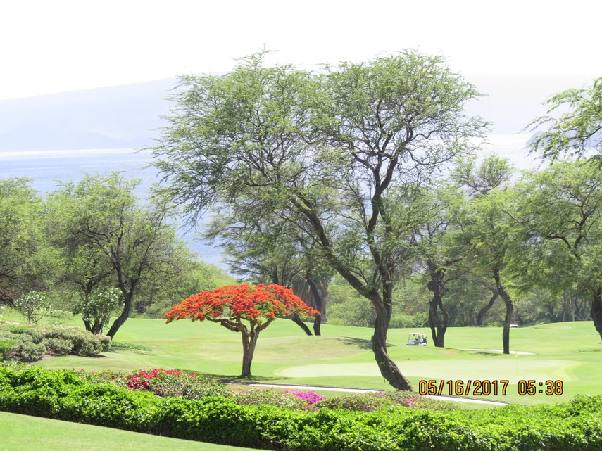 Yearly trip to Maui Westin Villas#VacationLife via @Vistana