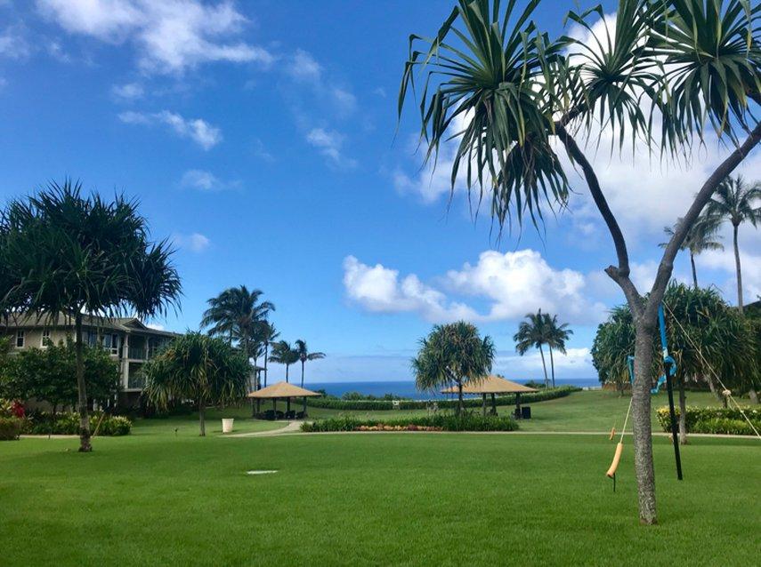 The Westin Princeville Resort views were just amazing!#VacationLife via @Vistana
