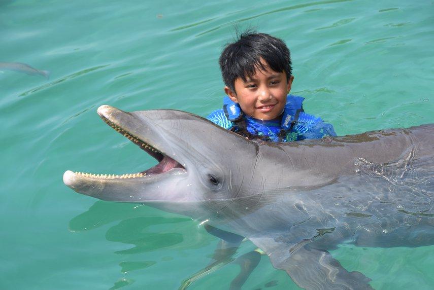 with a dolphin#VacationLife via @Vistana