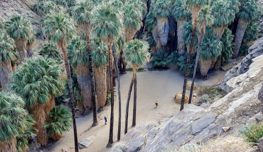 Palm Canyon, Palm Springs, CA#VacationLife via @Vistana
