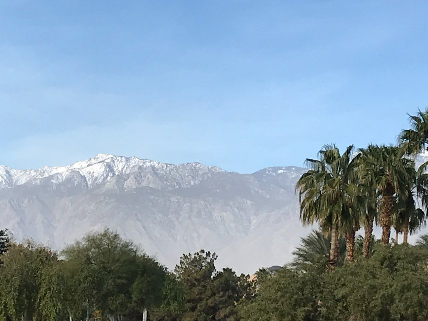 The diversity of palm trees and snow-capped mountains#VacationLife via @Vistana